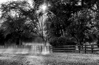 Foggy Morning on the Farm BW